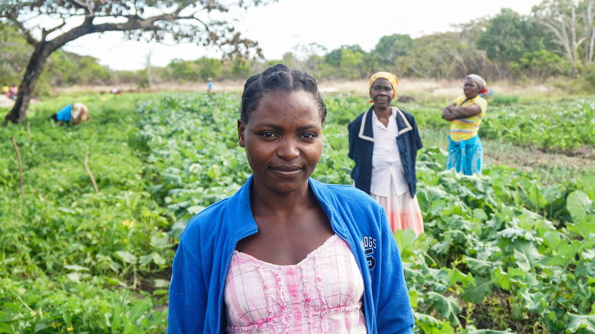 Women from Mozambique in the fields which they work
