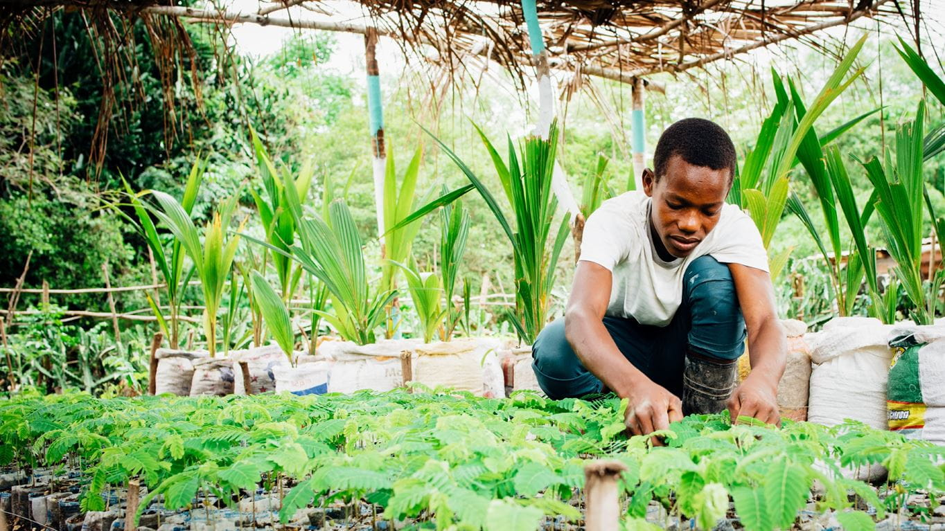 Renald works in Nippes Community Garden, Haiti. Photo: Ruth Towell/Tearfund