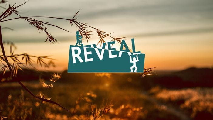 Reveal logo - Tools to support community transformation